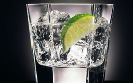 Gins (4 CL)
